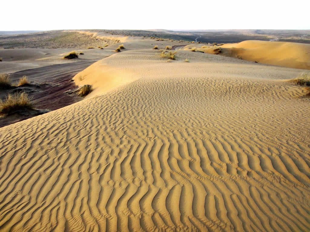 Karakum_Desert,_Turkmenistan